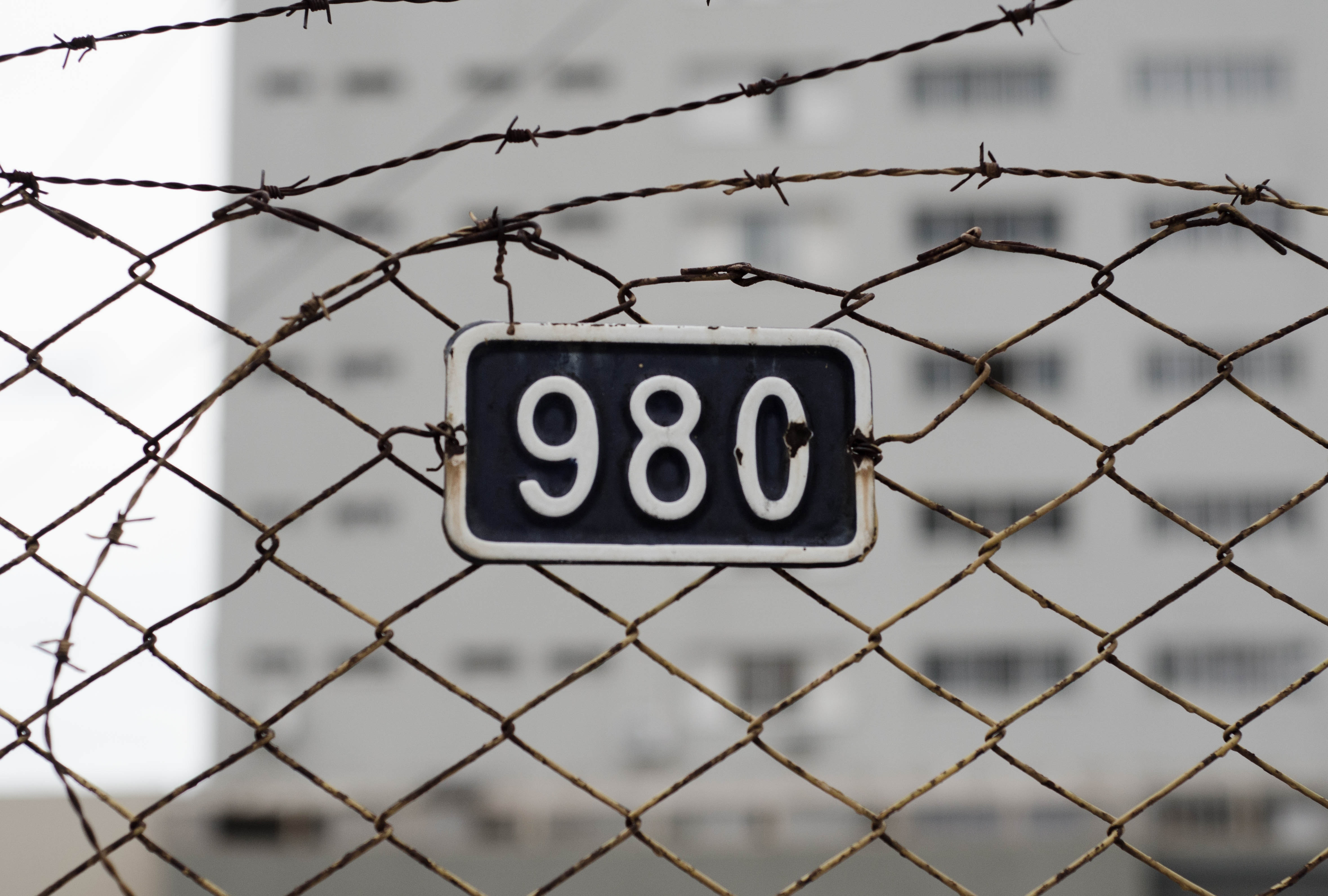barb-wires-barbed-wire-barrier-340585