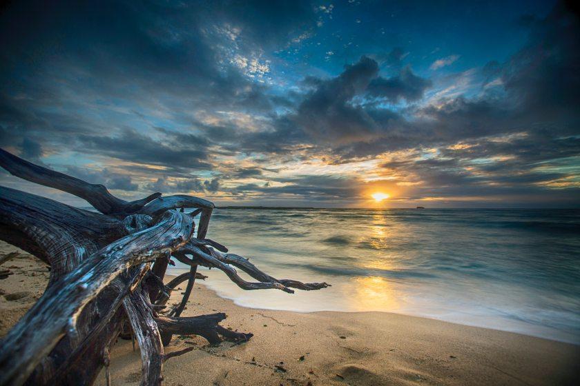 beach-dawn-dusk-292442