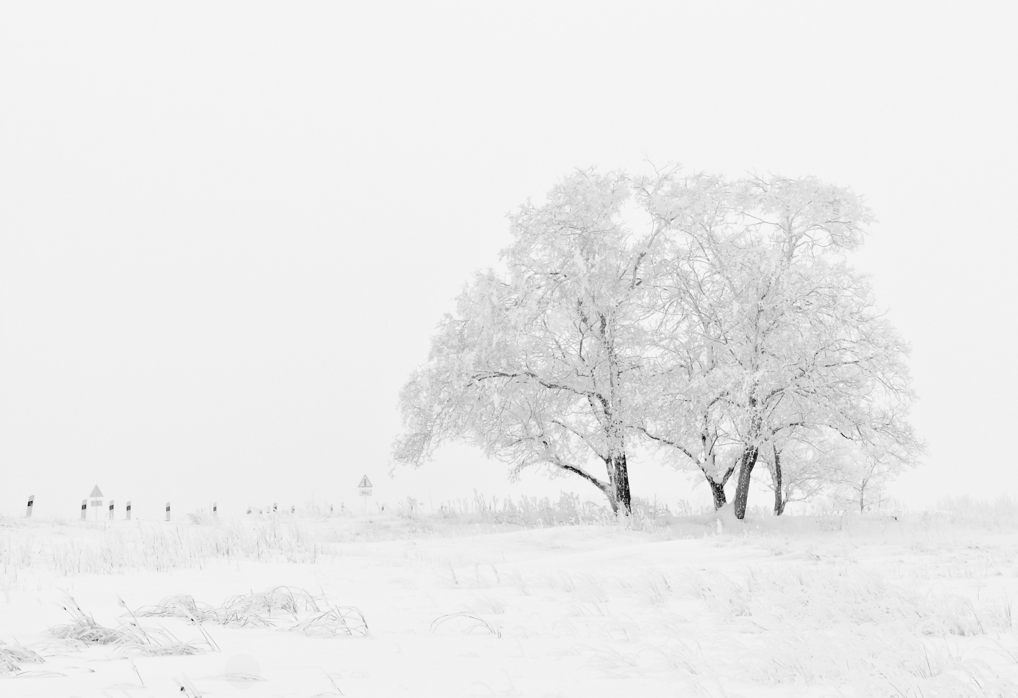 cold-sky-snow-66284
