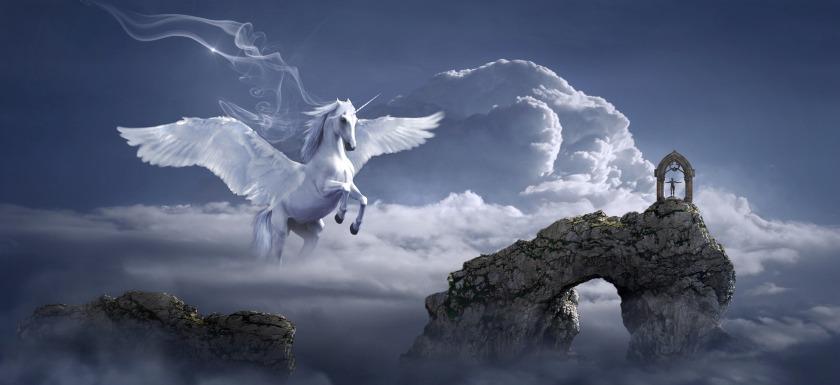 horse-3395135_1920