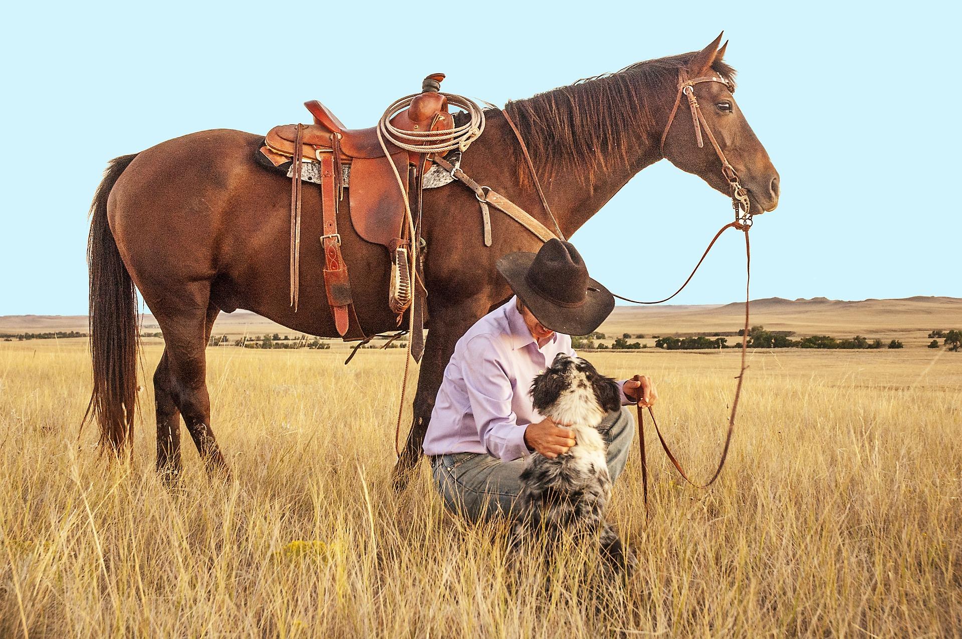 cowboy-1130695_1920